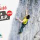 Zaveznik plezalisc Projekt OSP